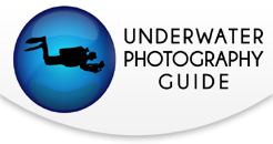 2018 Ocean Art Underwater Photo Competition
